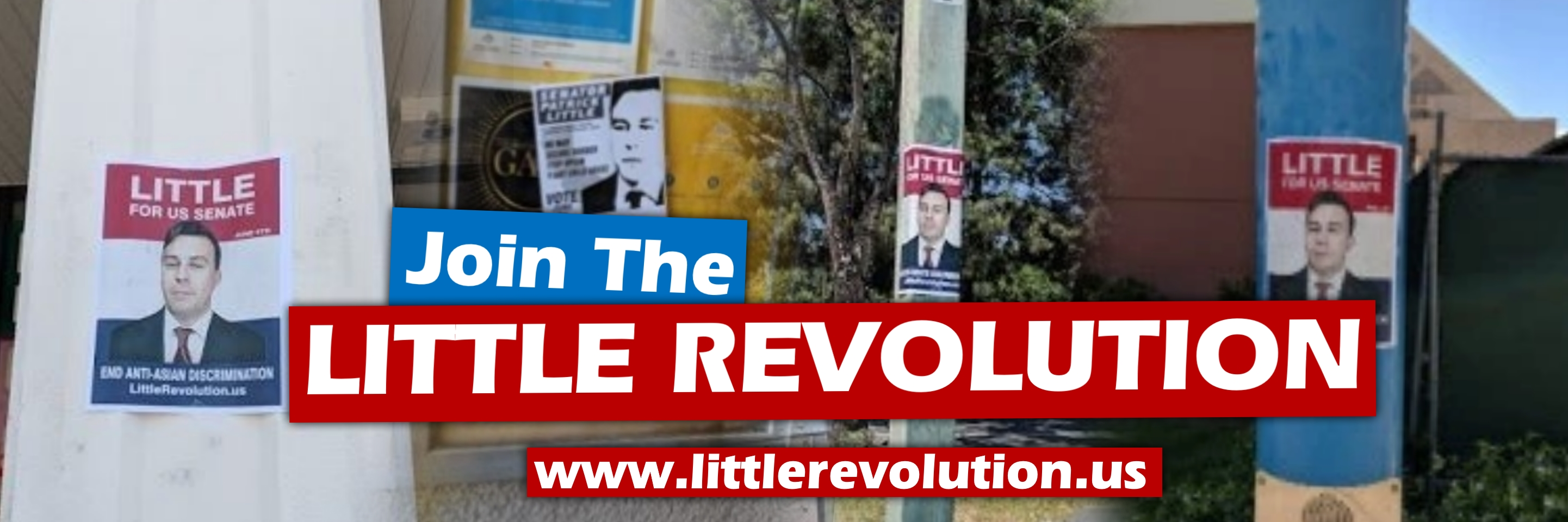 join the Little Revolution flyering effort