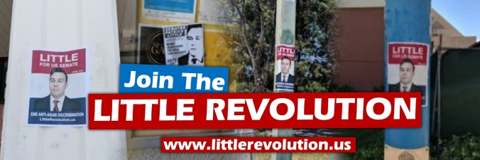 join the little revolution fliering